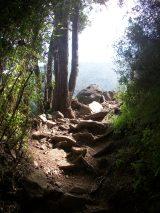 Despego Consciente: Campamento Naturaleza y Alma, La Campana, Olmué, 13 a 14 abr.2013