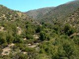 Despego Consciente: Trekking Naturaleza y Alma en San Felipe 10. Ago.2013