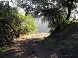 Centro Pineal – Pituitario y Células Emocionales: Trekking Naturaleza y Alma en La Campana 6. Jun.2015