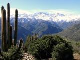 Centro Pineal – Pituitario y Células Emocionales: Trekking Naturaleza y Alma en La Reina, Stgo. 25. Jul.2015